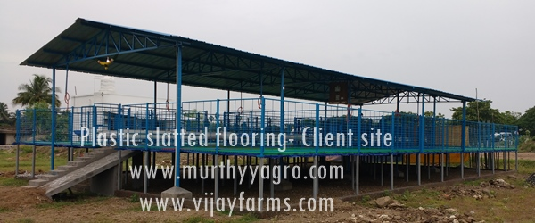 PVC-Flooring-Client-site-4